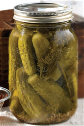 Sweet Fermented Gherkins
